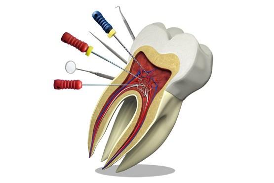 دهان و دندان، بهداشت ودرمان